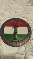 Forradalmi ifjusági napok kitűző, jelvény, 1919-1978