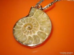 Ammonitesz ,régi csiga medál lánccal