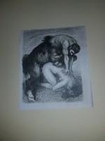 The art of erotica, erotikus metszet gyújtemény, szerzőjüket nem ismerem...