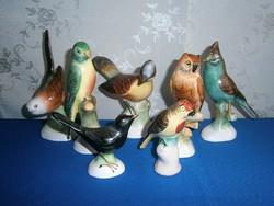 7 db nagyon szép Bodrogkeresztúri kerámia madár, papagáj, bagoly