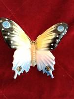Nagyméretű szépséges Volkstedt lepke pillangó