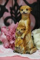 Mongúz mama kölykével