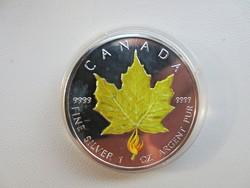 2004 Festett! Kanada Juhar 0.9999 1 uncia 31.1gr ezüst érme ritka!!!