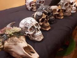 faragott  koponya eltérő súlyú és méretű