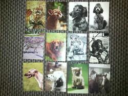 Állatos képeslapok - '70-'80-as évek