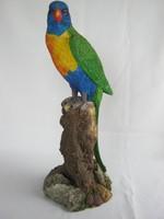 Faágon ülő színes papagáj
