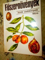 Fűszernövények Búvár  könyv sorozatból