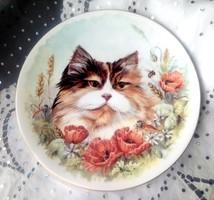 Royal Worcester fali tányér cicás