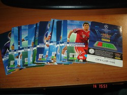 Panini kártyák  2012-14