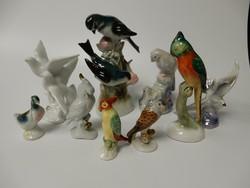 9 db-os porcelán madár gyűjtemény