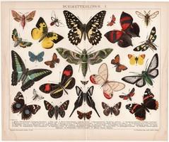 Pillangók I., litográfia 1894, német nyelvű, színes nyomat, Brockhaus, lepke, pillangó, állat, régi