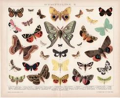 Pillangók II., litográfia 1894, német nyelvű, színes nyomat, Brockhaus, lepke, pillangó, állat, régi