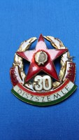 Díszszemle 30, 1945-1975, jelvény, kitűző
