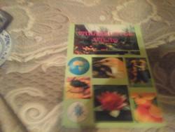 VARÁZSLATOS VILÁG  KÖRNYEZET 2-4  OSZTÁLYOSOKNAK 1994