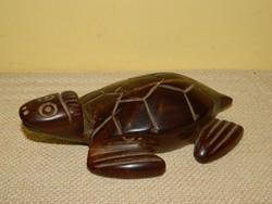 Faragott fa teknősbéka.