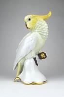 0X398 Hatalmas Rosenthal porcelán papagáj 24 cm