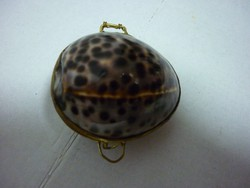 Ékszertartó kagylóból