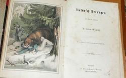 NATURSCHILDERUNGEN - 1866 - természetrajz 10 lithográfiával KALANDOK VADÁSZAT