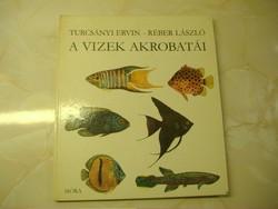Turcsányi Ervin A vizek akrobatái, 1981