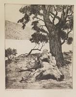 Biai Föglein István - Farönk a parton 29 x 24 cm rézkarc, keretezve