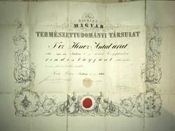 A király Magyar természettudományi társulat oklevele 1868!! Hencz Antal urat Rendes tagjául választ