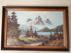 Gyönyörű hegyvidéki tájkép