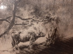 Kórusz József: Tehenek rézkarc 65 x 48 cm