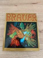 Brauer Monographie mit Werkkatalog 1972