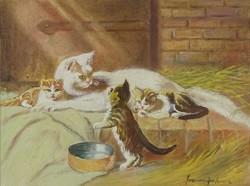 0Z119 Ismeretlen festő : Macskák