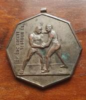 3. Régi bronz érem plakett kitüntetés BVSC