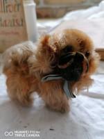 Eredeti Steiff patentos kutyus, kézzel nyírt szőrrel
