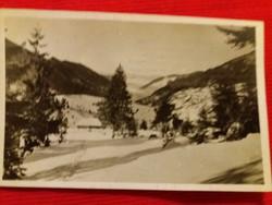 Antik fotó képeslap Kárpátalja a képek szerint