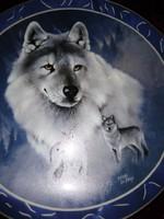 Porcelán különleges Bradex tányér 19,5cm