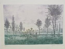Gross Arnold korai színezésű (zöldes-sárgás-kékes árnyalatok) rézkarca: Nyár