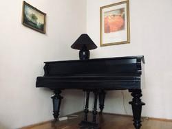 Frany Oeser, páncéltőkés zongora