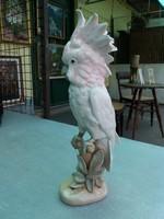 Papagáj. Royal Dux porcelán.