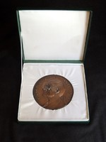 Grastyán Endre Akadémiai Díj 10,5cm Dobozos Bronz Emlékérem Plakett 1924-1988