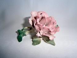 Nagyon szép Ens porcelán virág szegfű