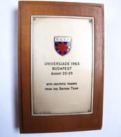 Universiade 1965 Budapest,ezüst plakett.