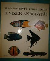 Turcsányi Ervin: A vizek akrobatái