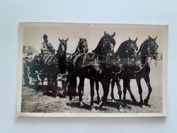 Régi lovas képeslap 1942 Debreceni ötösfogat