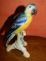 Német porcelán papagáj