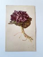 Régi virágos képeslap ibolyás levelezőlap
