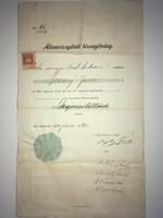 Állam vizsgálati biz Bozzayi Jenő úr részére képesítettnek ítéltetett! Budapest 1904. júniu