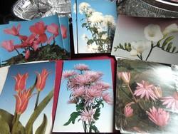 Régi virágos képeslapok