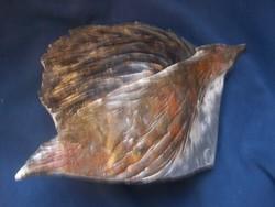 Madár plasztika - díszdoboz - samottos, jelzett különlegesség  Samottos kerámia34 cm x 24,5 cm x 13