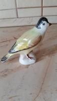 Porcelán, kis madár eladó!