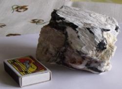 1db Fél Kilós Fa Fosszília - (kovásodott, kövesedett, opálosodott részekkel)
