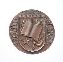 Orosháza Művelődéséért bronz plakett