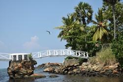 Híd az Édenbe; egyedi nagyméretű fotó canvas vászonkép